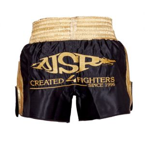 FIGHTER WEAR : Short GP / K1 Thaï Pro Model Ltd