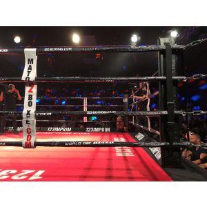 Jeu de quatre coins de ring rouge blanc bleu Rd boxing